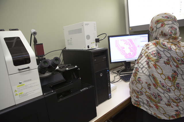 Photo: Researcher using Olympus Virtual Microscope