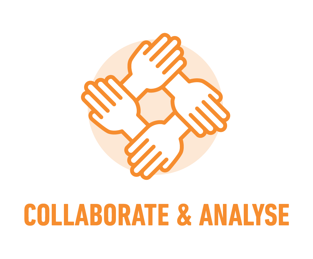 Collaborate & analyse